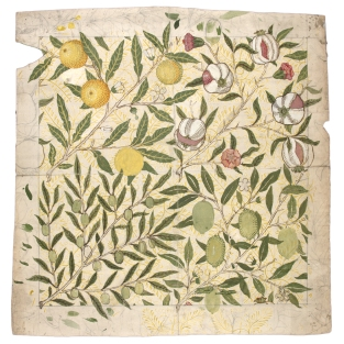 "Design for ""Fruit Wallpaper"" - William Morris, 1862"