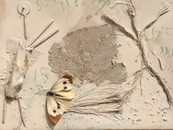 picasso-butterfly